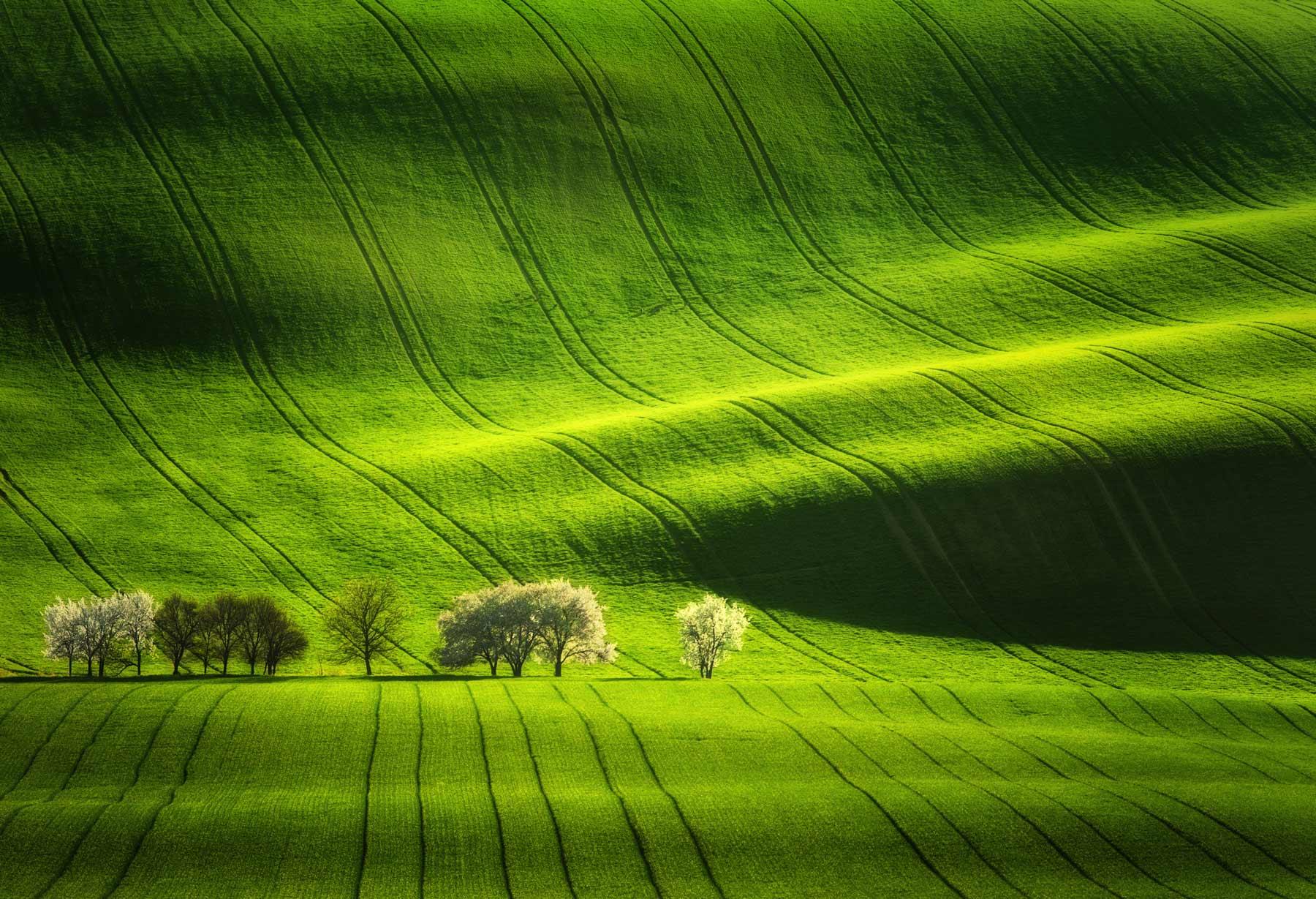 moravian tuscany Martin Bisof photography
